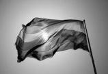 Поводом 17. маја, Међународног дана борбе против хомофобије и трансфобије: ЛГБТ особе међу најдискриминисанијим групама