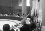Представљен Посебан извештај Заштитника грађана о саветима за међунационалне односе